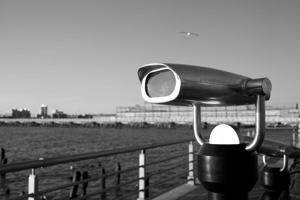 Vista de longe a gaivota segue seu voo. Tarde de inverno.