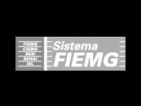 holonomics-client-log-sistema-fiemg